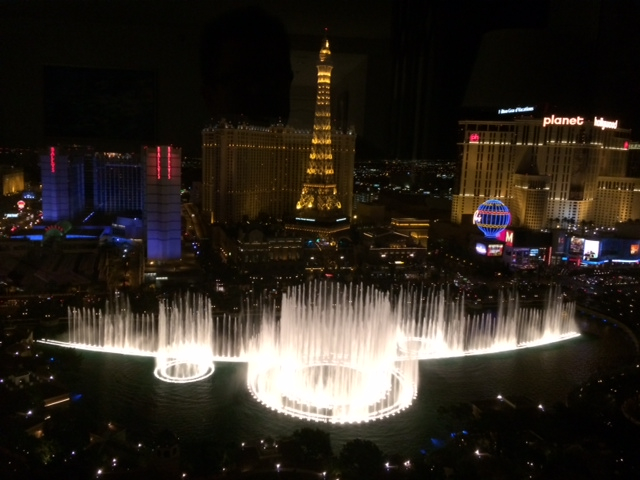 View from Bellagio, the Host Hotel of the AREAA National Convention